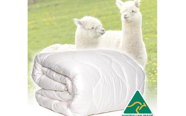 chăn lông cừu của úc
